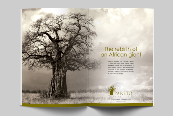 Pareto Magazine Advertisement